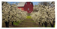 Red Barn Spring Beach Towel