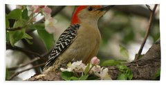 Beach Sheet featuring the photograph Red-bellied Woodpecker by James Peterson