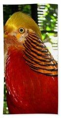 Red Bird Beach Towel by Pamela Walton
