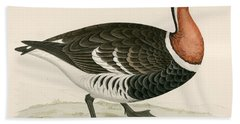 Red Breasted Goose Beach Towel