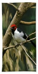 Red-capped Cardinal Beach Towel by Adam Olsen