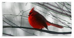 Red Cardinal On Winter Branch  Beach Towel