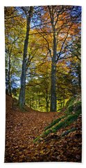 Red Carpet In Reelig Glen During Autumn Beach Towel