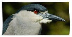Beach Sheet featuring the photograph Red Eye - Black-crowned Night Heron Portrait by Georgia Mizuleva