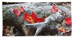 Red Fall Against Grey Beach Sheet