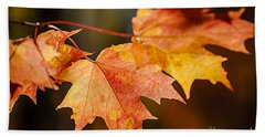 Red Fall Maple Leaves Beach Towel