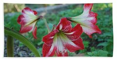 Red Flower 1 Beach Towel by George Katechis