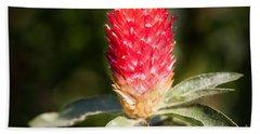 Red Flower Beach Sheet
