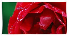 Beach Sheet featuring the photograph Red Flower Wet by Matt Harang