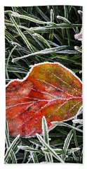 Red Frosty Leaf On Frozen Ground Beach Towel