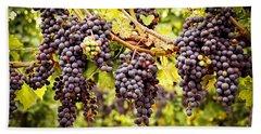 Red Grapes In Vineyard Beach Towel
