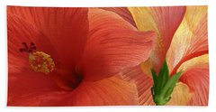 Beach Towel featuring the photograph Red Hibiscus by Ben and Raisa Gertsberg