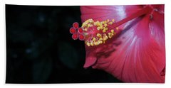 Beach Towel featuring the photograph Red Hibiscus by Ron Davidson