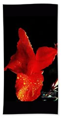 Beach Towel featuring the photograph Red Hot Canna Lilly by Michael Hoard