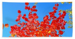 Beach Towel featuring the photograph Red Leaves by David Lawson