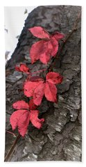 Red Leaves On Bark Beach Sheet