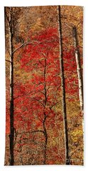 Red Leaves Beach Sheet by Patrick Shupert