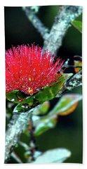 Red Lehua  Kawaiko'olihilihiokalikolehua Beach Sheet