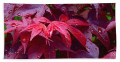 Red Maple After Rain Beach Towel by Ann Horn