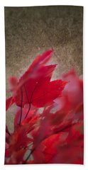 Red Maple Dreams Beach Sheet