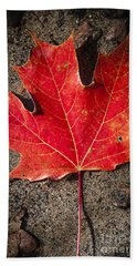 Red Maple Leaf In Water Beach Towel