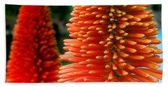 Red-orange Flower Of Eremurus Ruiter-hybride Beach Towel