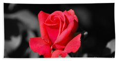 Red Red Rose - Sc Beach Sheet
