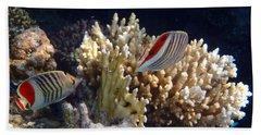 Red Sea Beauty 2 Beach Sheet