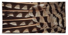Red-shafted Flicker Feathers Beach Towel