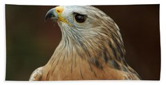 Beach Sheet featuring the photograph Red-shouldered Hawk by Doug Herr