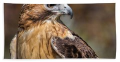 Red Tail Hawk Beach Towel by Dale Kincaid