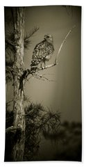 Red Tail Hawk On Loop Road Beach Sheet by Bradley R Youngberg