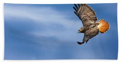 Red Tailed Hawk Soaring Beach Sheet