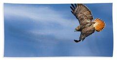 Red Tailed Hawk Soaring Beach Sheet by Bill Wakeley