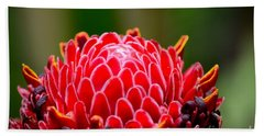 Red Torch Ginger Flower Head From Tropics Singapore Beach Sheet