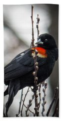 Red Winged Blackbird In Pussy Willows Beach Towel by Patti Deters