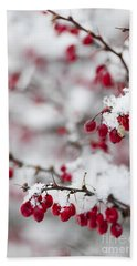 Red Winter Berries Under Snow Beach Sheet