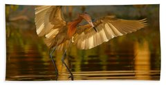 Reddish Egret In Golden Sunlight Beach Sheet by Myrna Bradshaw