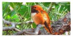 Redheaded Hummingbird II Beach Towel by Lanita Williams