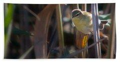 Reed Warbler Beach Towel
