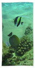 Reef Life Beach Sheet