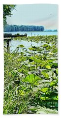 Reelfoot Lake Lilly Pads Beach Sheet
