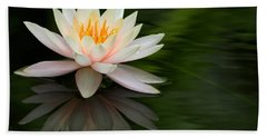 Reflections Of A Water Lily Beach Sheet