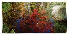Beach Towel featuring the photograph Reflections On Algonquin by David Porteus
