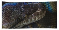 Reticulated Python With Rainbow Scales Beach Sheet