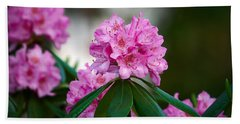 Rhododendron Beach Towel