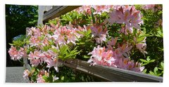 Rhododendrons In Tumwater Falls Park Beach Towel