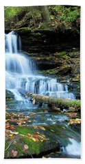 Ricketts Glen Hidden Waterfall Beach Towel