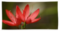 River Lily Beach Towel