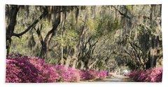 Road With Azaleas And Live Oaks Beach Towel